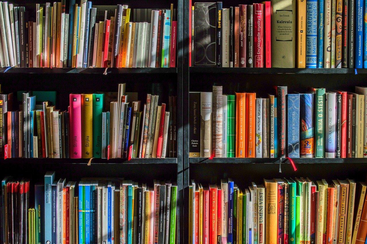 Business Bücher Empfehlungen